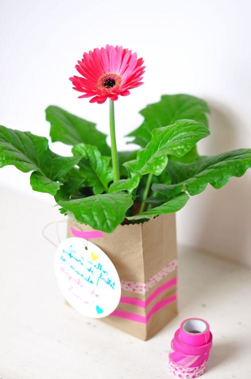 Spring-gift-2